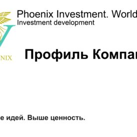 Инвестиционный профиль Холдинга Phoenix