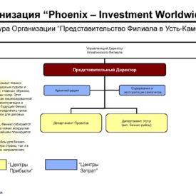 Окончательный вариант модернизации бизнеса Холдинга Phoenix